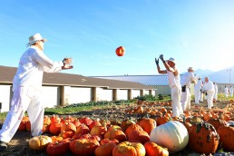 Inmate tossing pumpkin to another inmate to ready pumpkins for delivery
