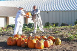 Inmate handing over a pumpkin to another inmate at the UCI nursery